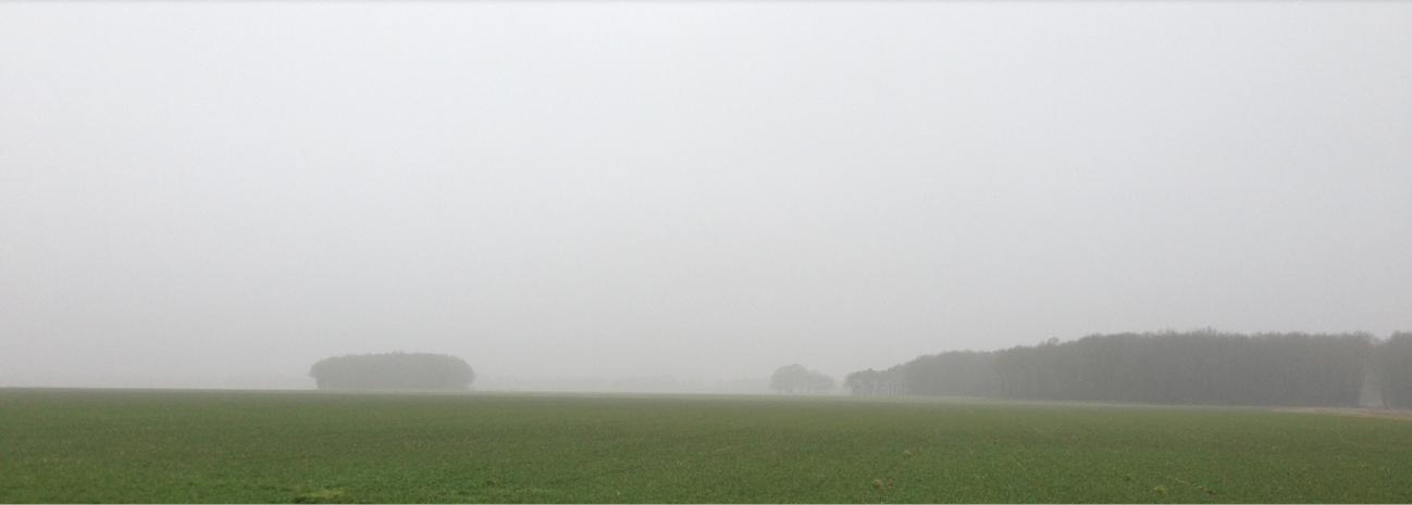 slider_1_mist